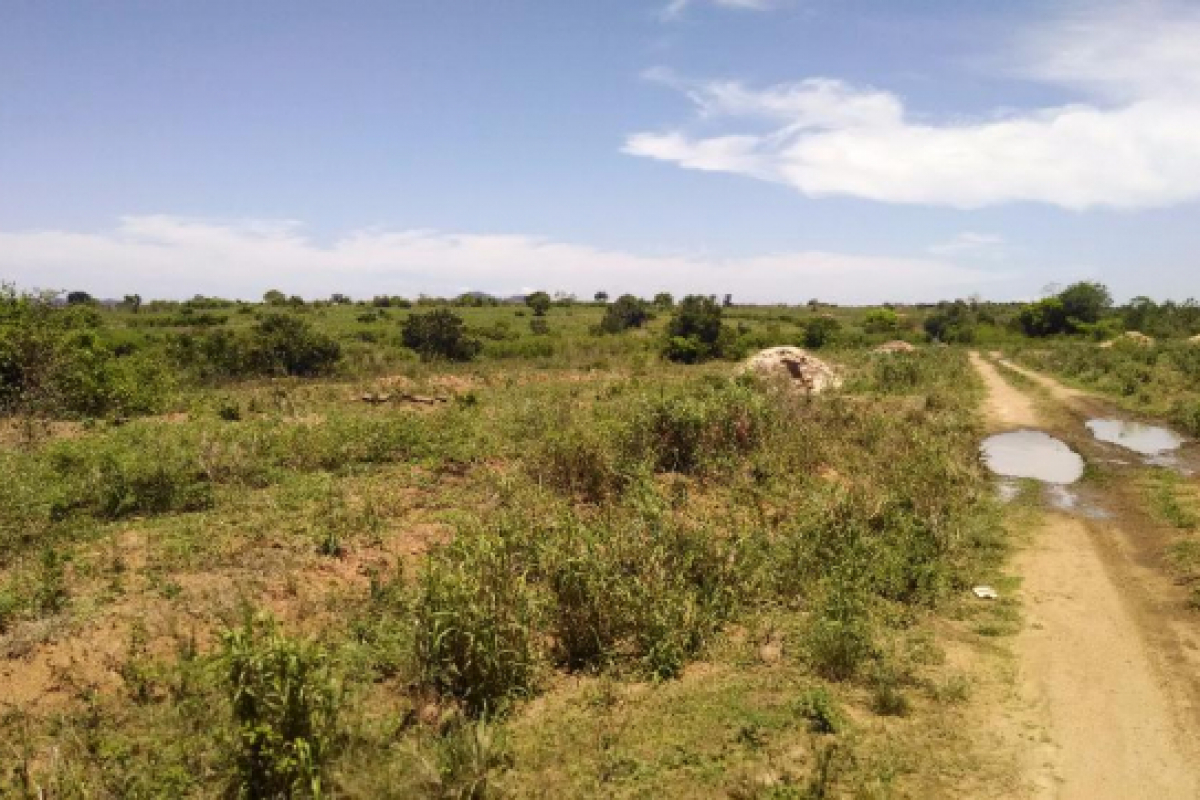 1001065213 3 644x461 lands in kasoa sale land 1